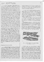 scrittura_etrusca